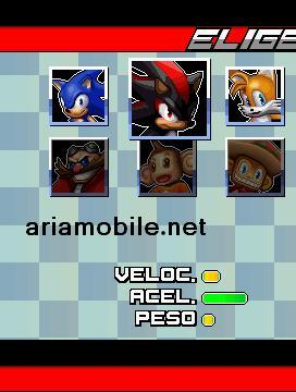 بازی زیبای سونیک تحت جاوا Sonic Racing