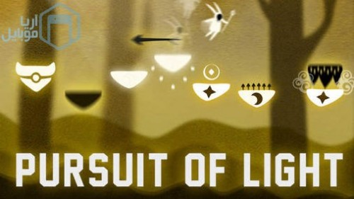 1_pursuit_of_light